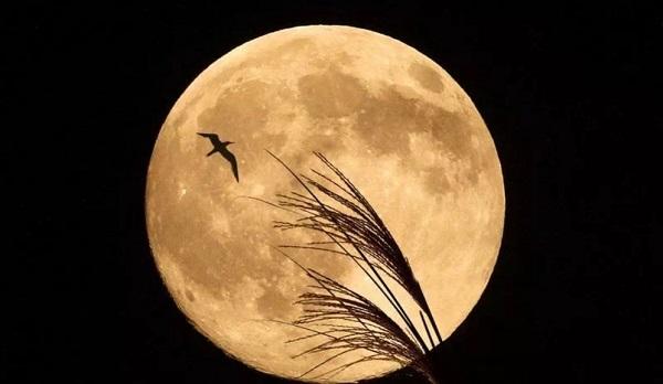 3 знакомства лунные сутки