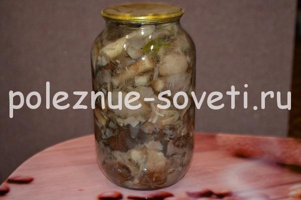 Маринованные грибы на зиму: рецепты приготовления