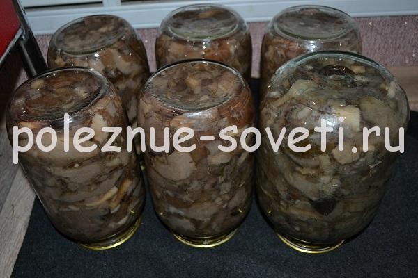 Маринованные белые грибы на зиму без стерилизации