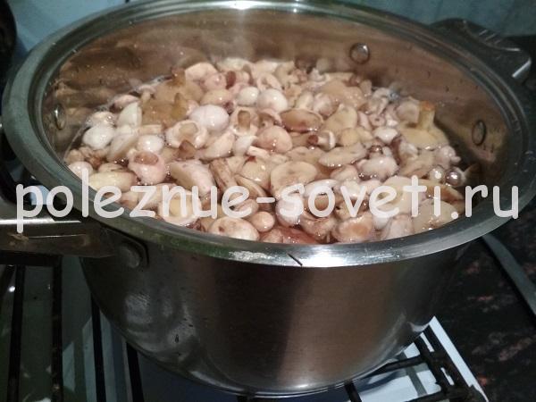 Маринованные маслята на зиму - самый вкусный рецепт без стерилизации