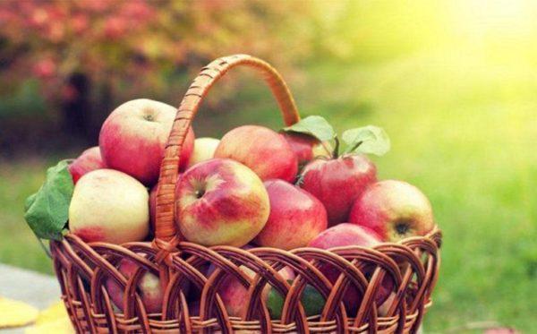 Яблочный спас 2018:дата