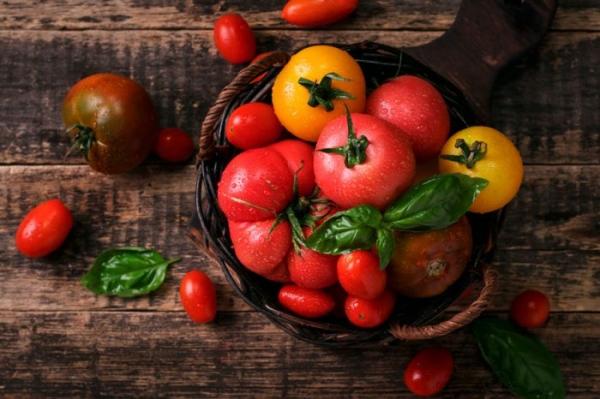 Лучшие сорта помидор для открытого грунта 2021: отзывы, фото