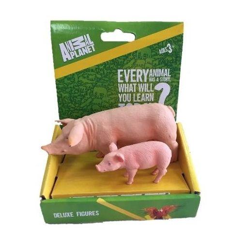 Что подарить коллеге по работе на Новый год 2019 Свиньи недорого
