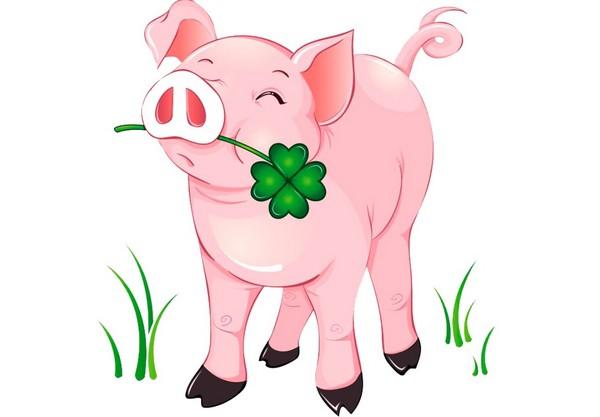 Символ 2019 года Свиньи картинки