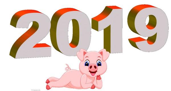 Символ 2019 года Свинья картинки
