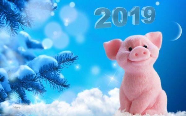 Как оригинально встретить Новый год 2019 Свиньи